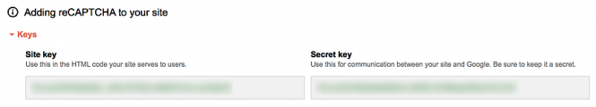 Site key and secret key for reCAPTCHA